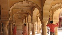The best of Jaipur: forts and monkeys