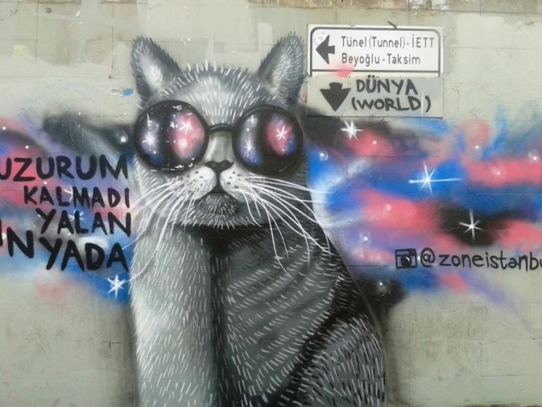 cat graffitti in Istanbul