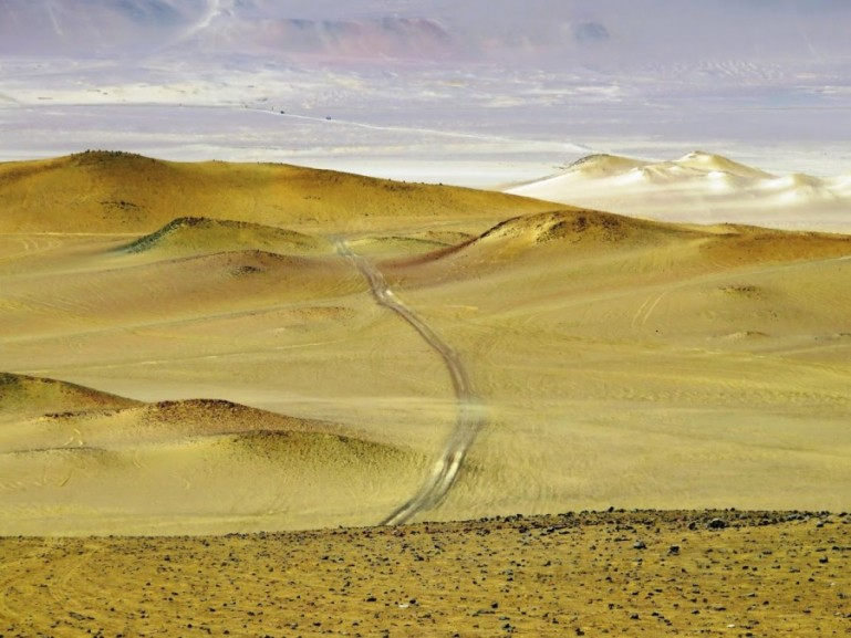 Paracas Natural Reserve in Ica Peru