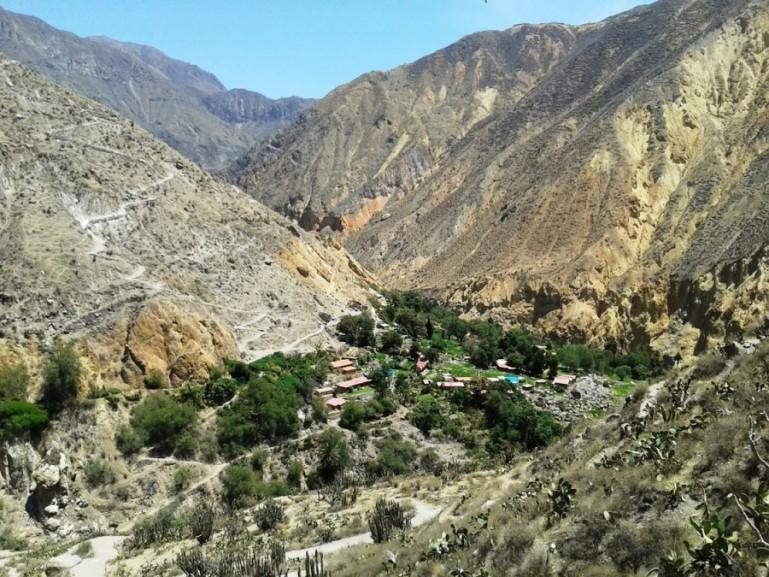 the Oasis where you will sleep on your Colca Canyon tour