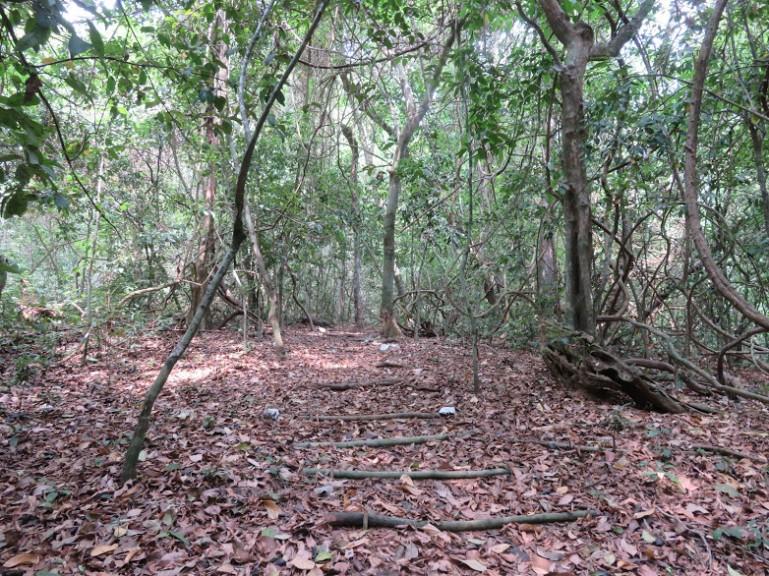 Cotigao wildlife sanctuary Palolem