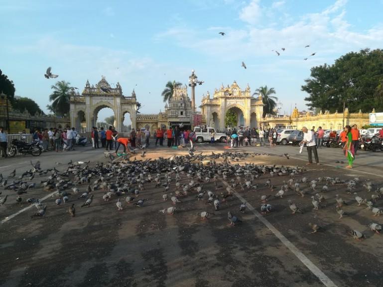 15 things to do in Mysore: the heart of Karnataka