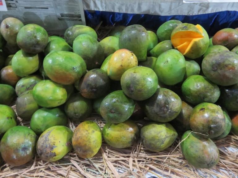 best food in mysore: mangoes