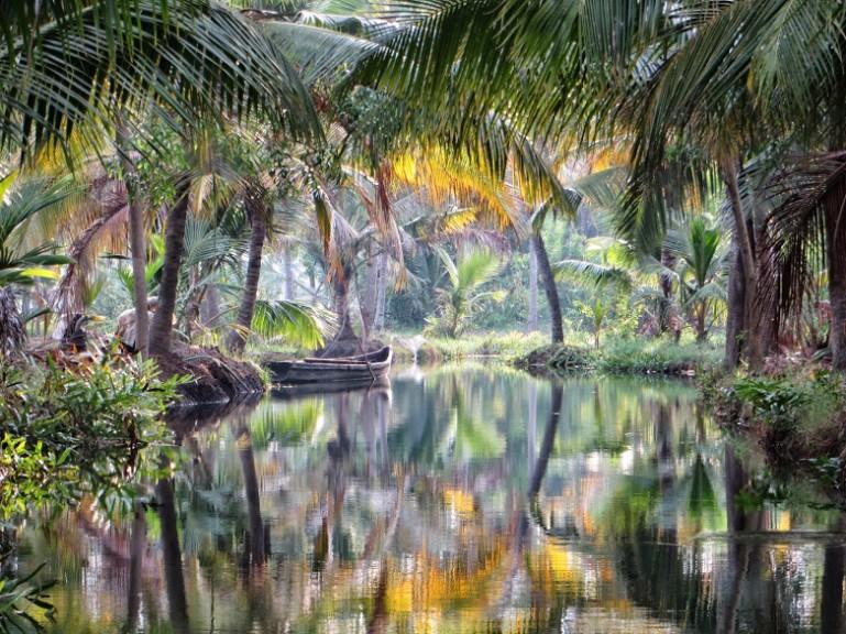The backwaters around Munroe Island in Kerala