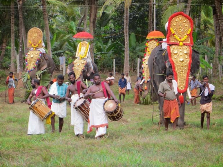 elephants at the Munroe Island temple festival