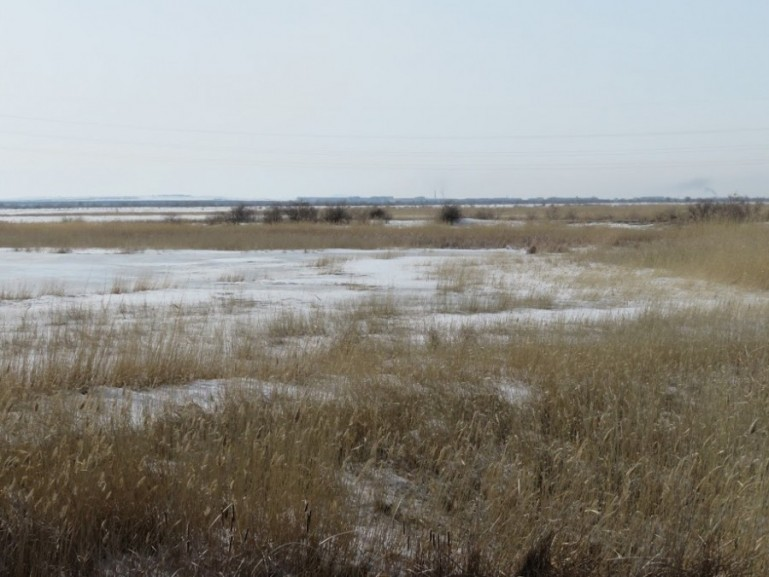 Frozen steppes in Kazakhstan