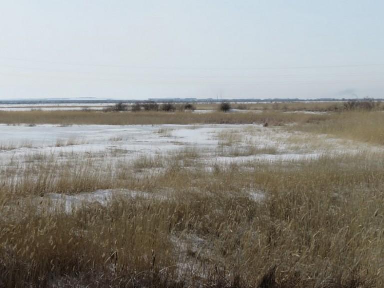 The steppes near Karaganda
