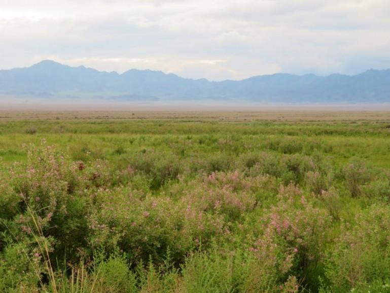 Kazakhstan itinerary: 2 weeks in Kazakhstan