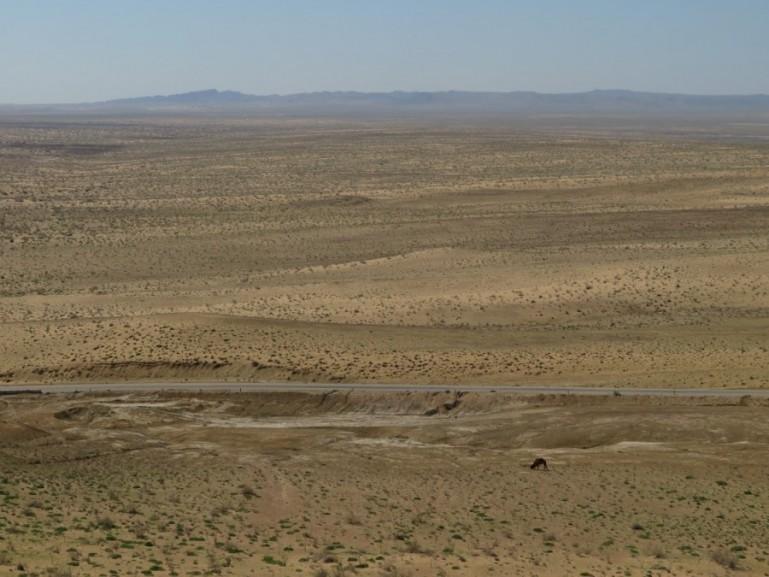 Travel in the desert of Karakalpakstan