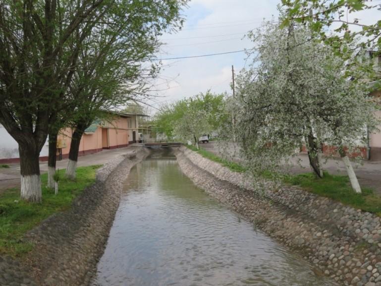 Old Tashkent in spring