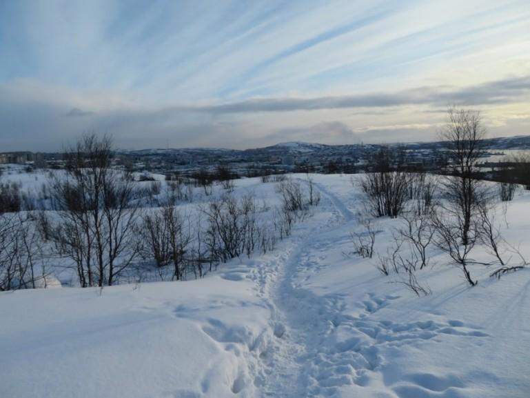 Snow near Alyosha on the way to Lake Semyonovskoe