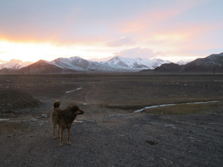Pamir highway itinerary: From Dushanbe to Osh in one week