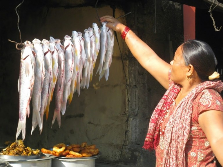 Fish from the Karnali river