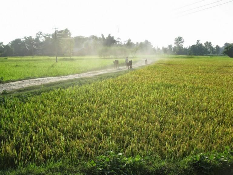 Road to Bardiya National Park