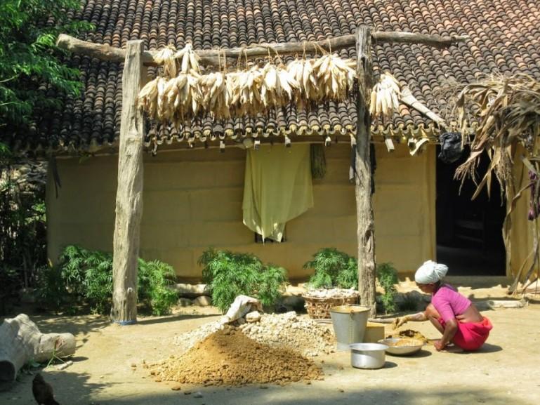 Tharu home in Bardiya