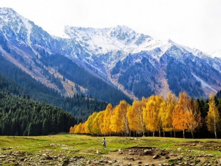 The valley of flowers in Kyrgyzstan