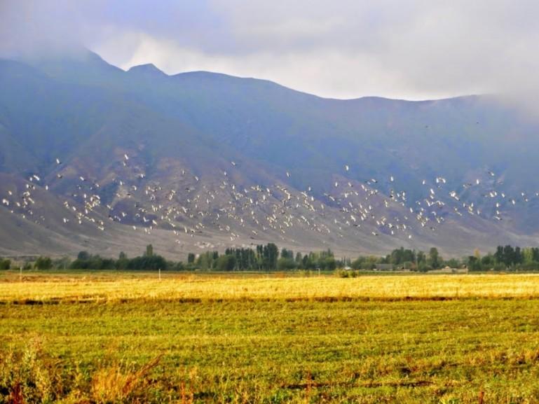 Bokonbaevo Kyrgyzstan