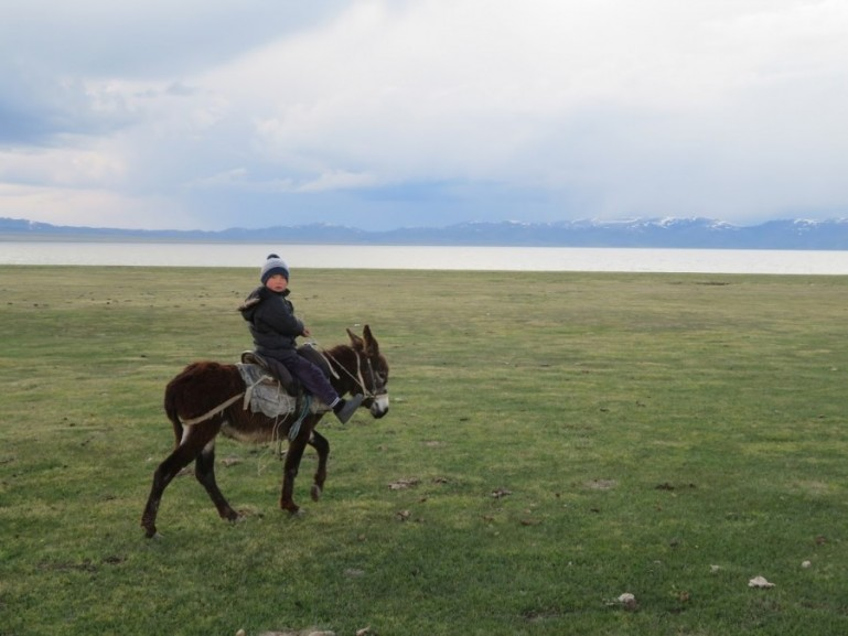 nomad boy on a horse at Song kul lake in Kyrgyzstan