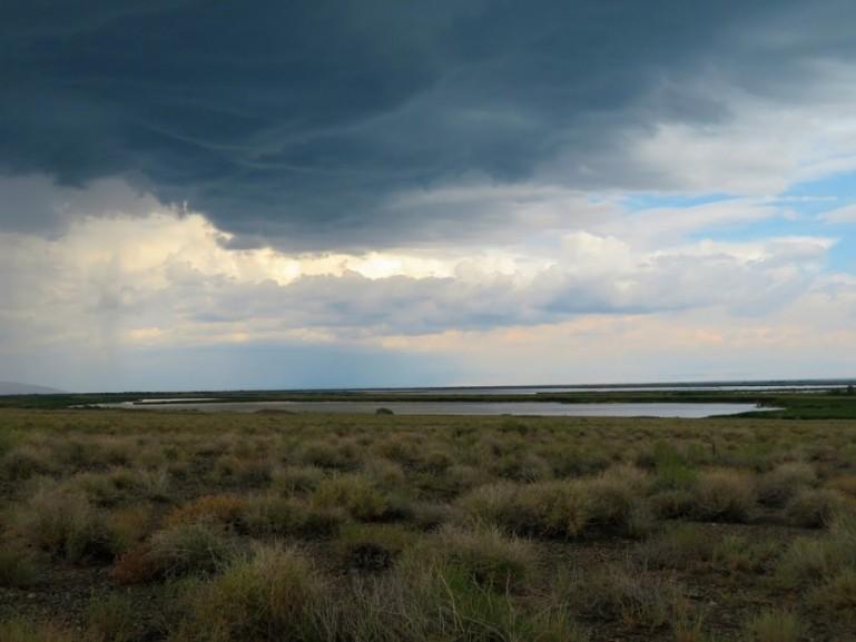Rain in Altyn Emel National park