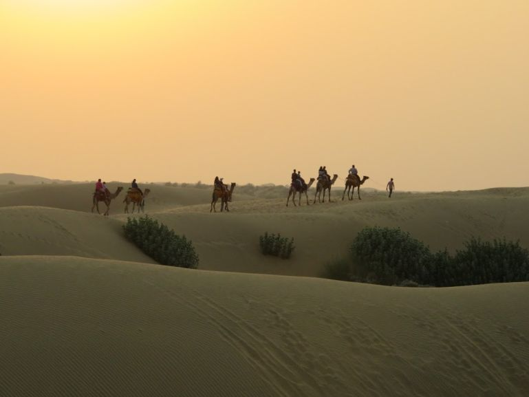 A camel safari is one of the highlights of backpacking Rajasthan