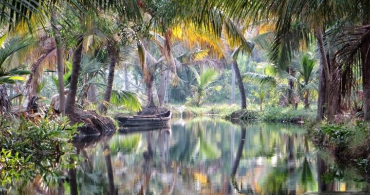 The best backwaters in Kerala India