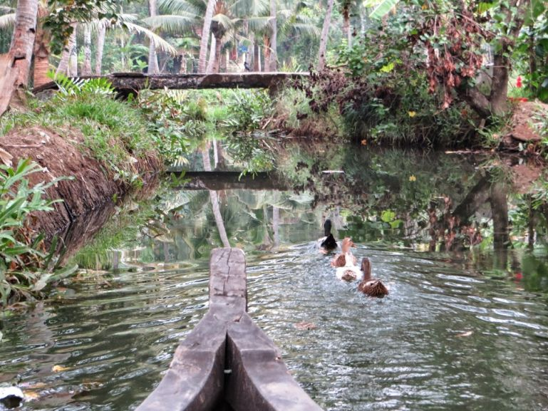 The best backwaters in Kerala are around Munroe Island