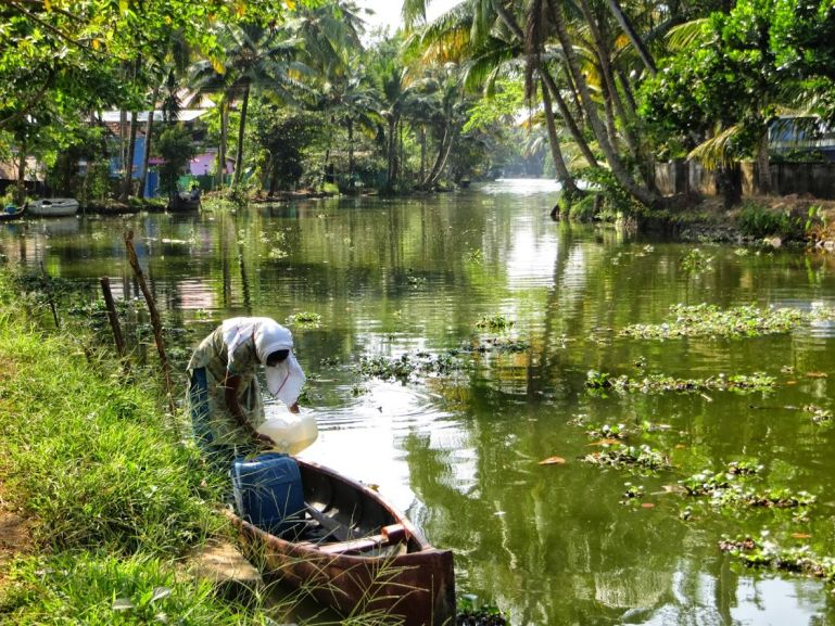 Allepey backwaters