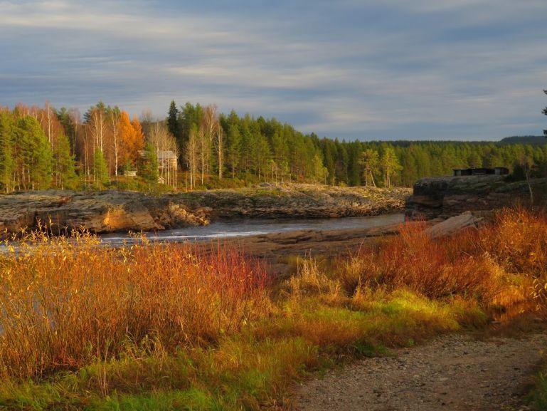 Swedish Lapland in October