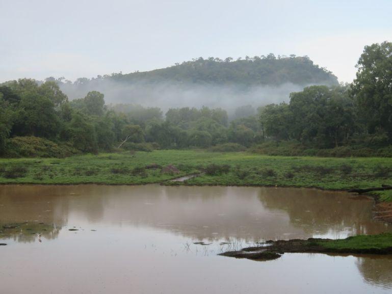 BR Hills lake in Karnataka, India
