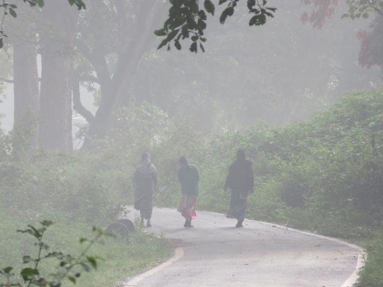 Soliga people in BR Hills, Karnataka, India