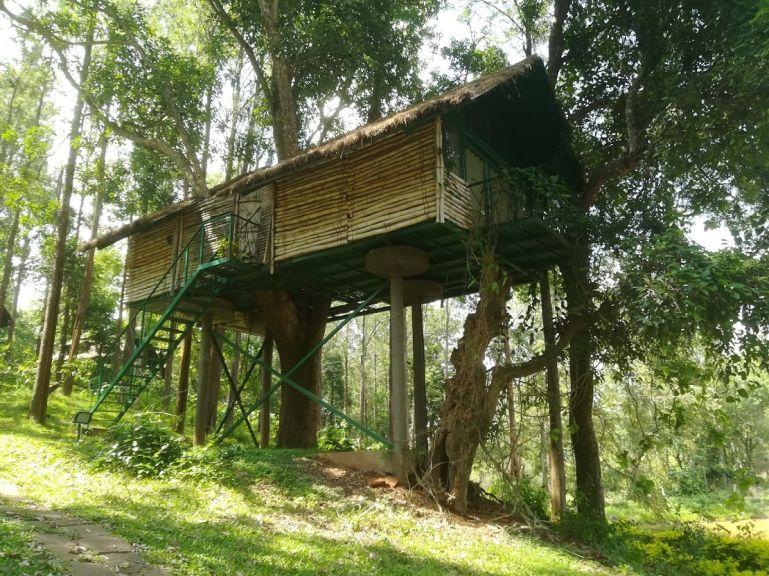 Tree House in BR Hills in Karnataka, India