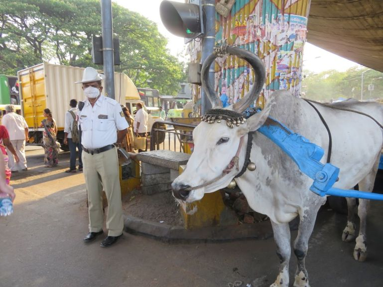 A Bangalore itinerary on how to spend one day in Bangalore