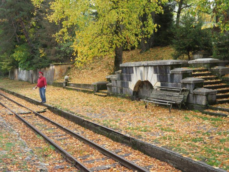 Kukushka train in autumn